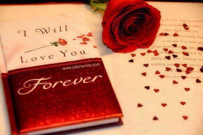 37 Best Love You Forever Images