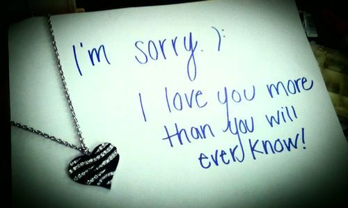 I'm Sorry I Love You More Than You Will Ever Know