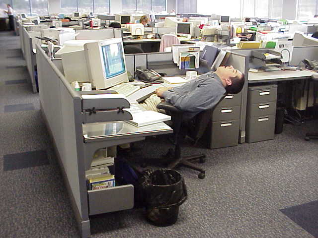 Tide Man Funny Sleeping In The Office