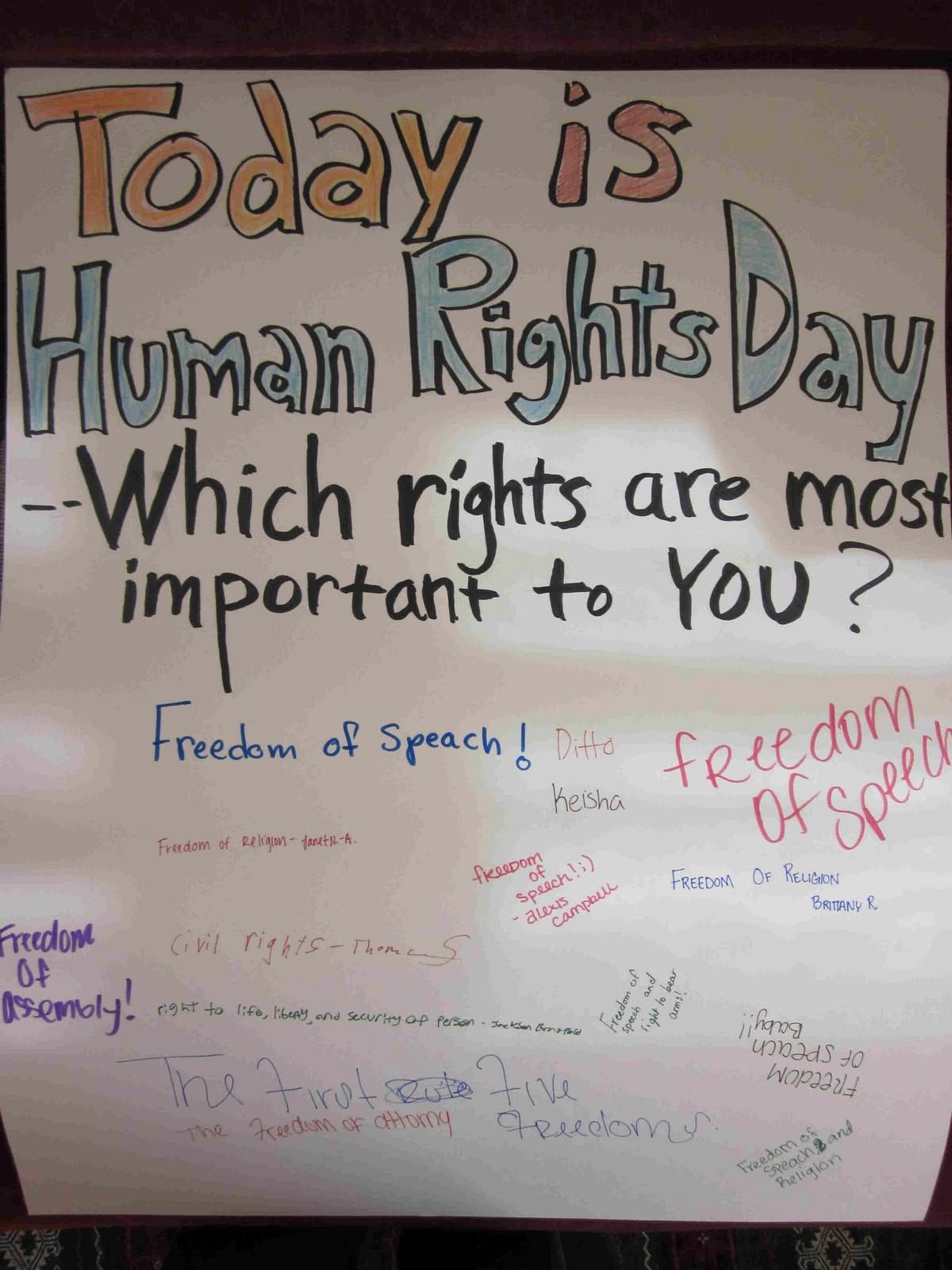 15 Best Human Rights Day Poster
