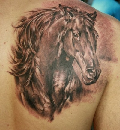 12 incredible horse tattoo images pictures and design ideas. Black Bedroom Furniture Sets. Home Design Ideas