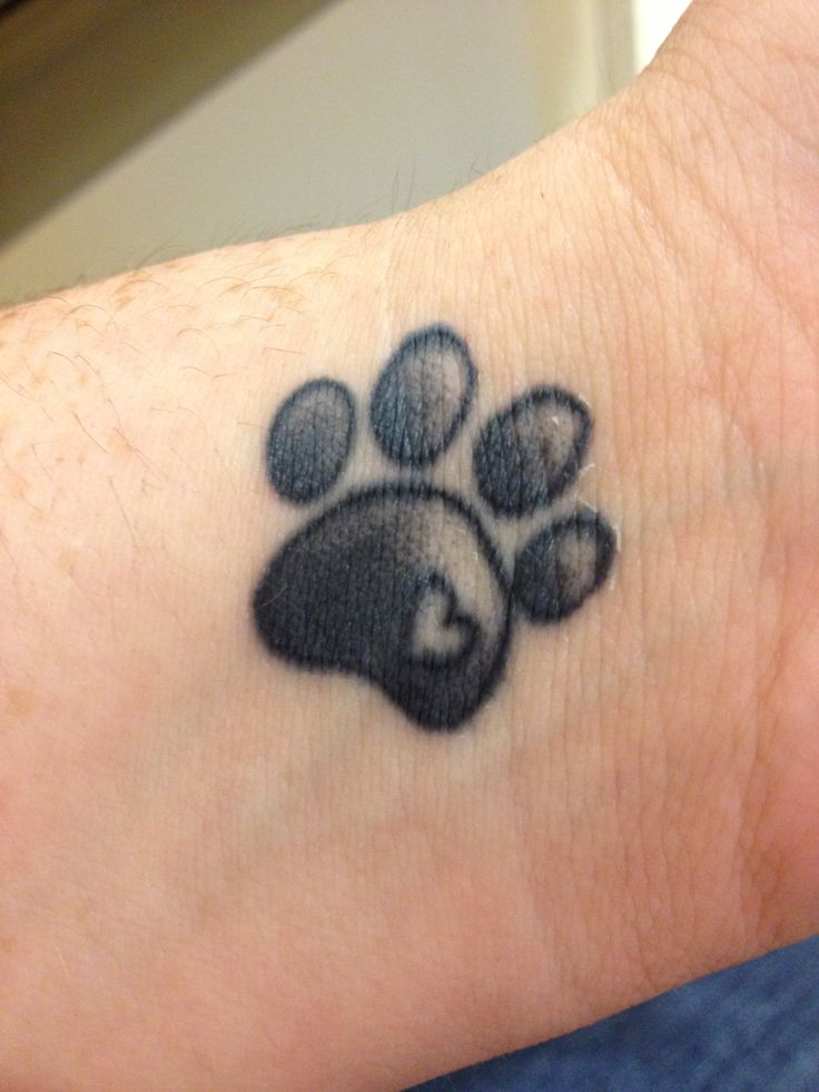 27+ Cute Paw Tattoos Images