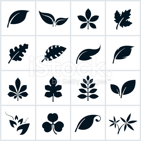7 leaf tattoo design ideas and samples
