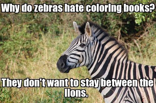 Funny Zebra Meme : And the lions do what now funny zebra meme