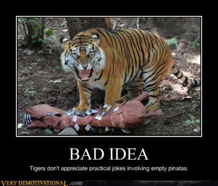 bad idea funny tiger meme poster for whatsapp. Black Bedroom Furniture Sets. Home Design Ideas