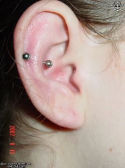 19 Snug Piercing Pictures And Images For Girls Ear Piercings Snug