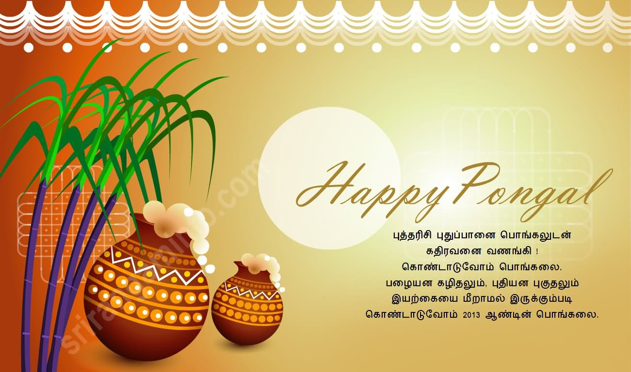 35 Best Happy Pongal Greetings Picture