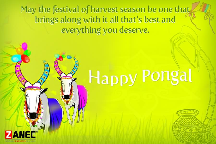 Pongalo pongal greetings picture may the festival of harvest season be one that brings along with it all thats best happy pongal m4hsunfo