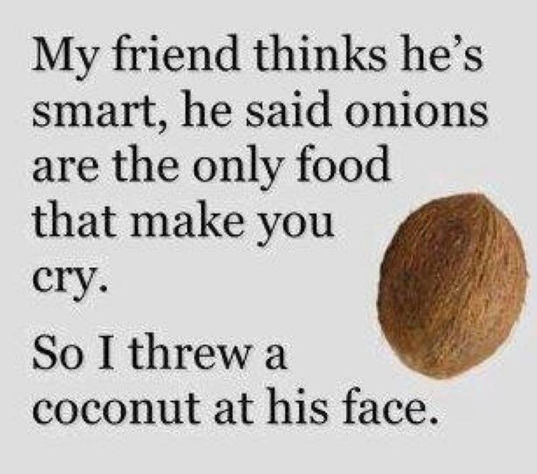 19 Most Funny Joke Pictures