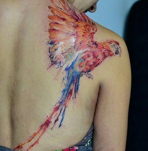 Watercolor Flying Parrot Tattoo On Girl Right Back Shoulder