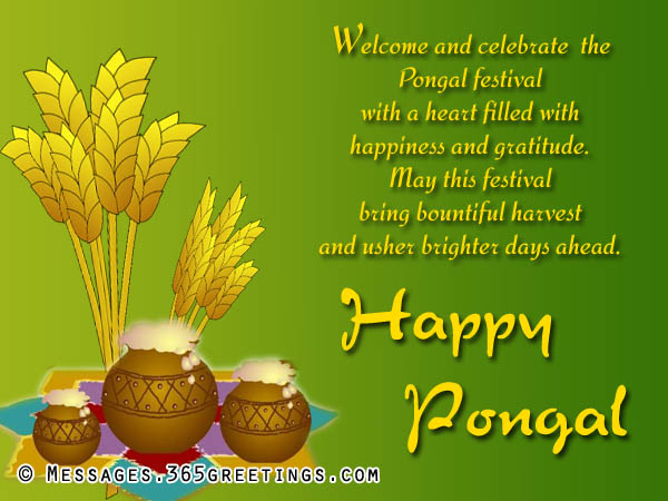 Welcome and celebrate the pongal festival with a heart filled with welcome and celebrate the pongal festival with a heart filled with happiness and gratitude happy pongal m4hsunfo