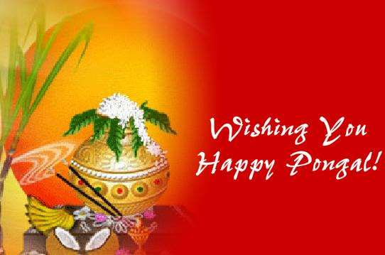 Wishing you happy pongal m4hsunfo