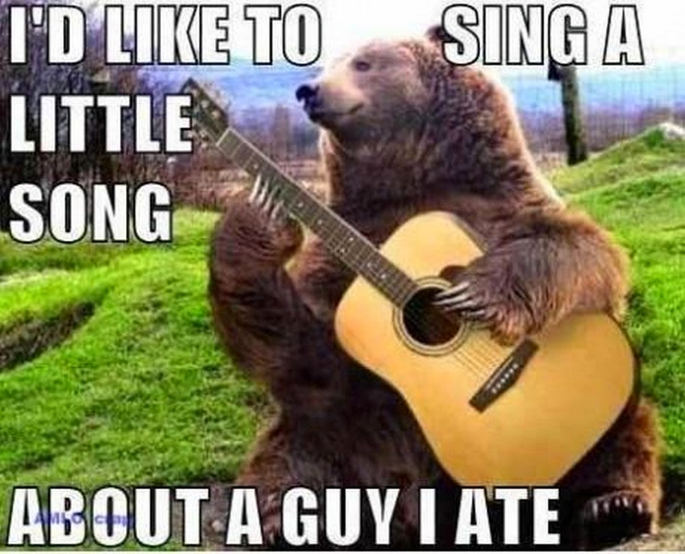 Bear playing guitar funny meme