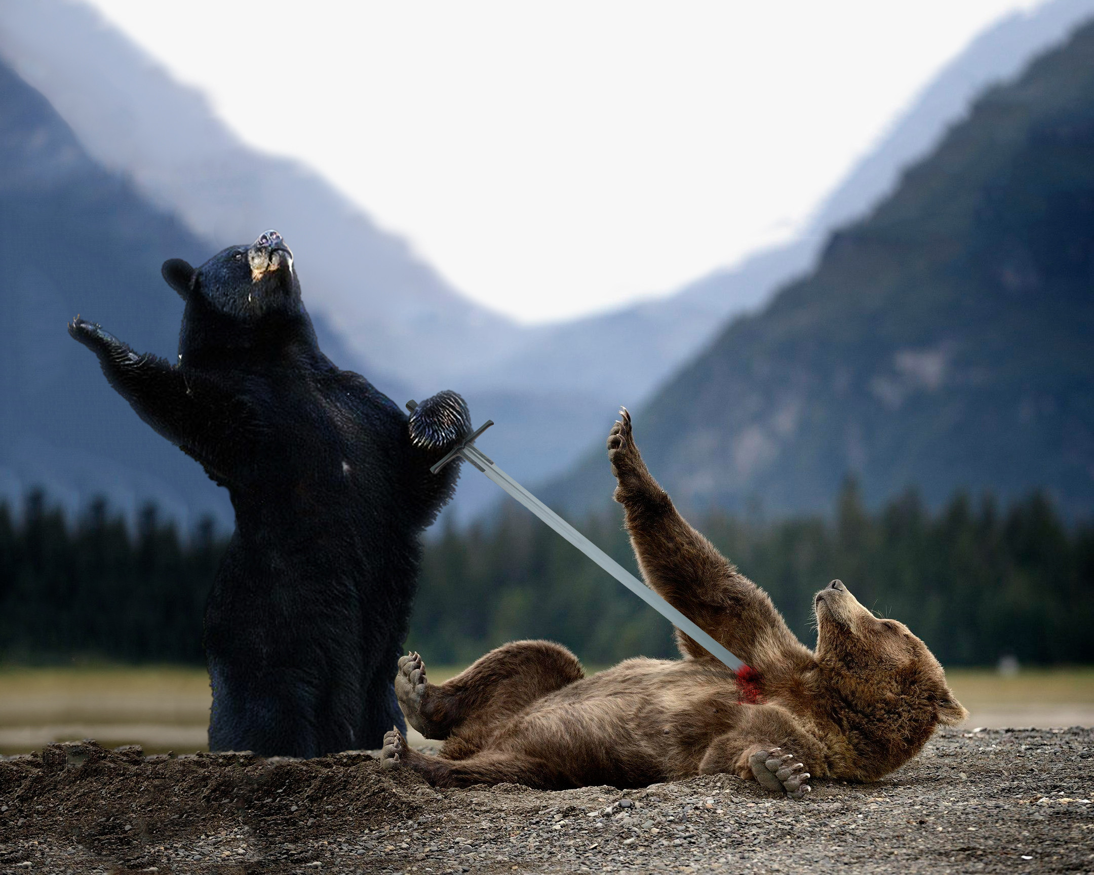 Funny Pictures Of The Day - 72 Pics |Funny Black Bear Family