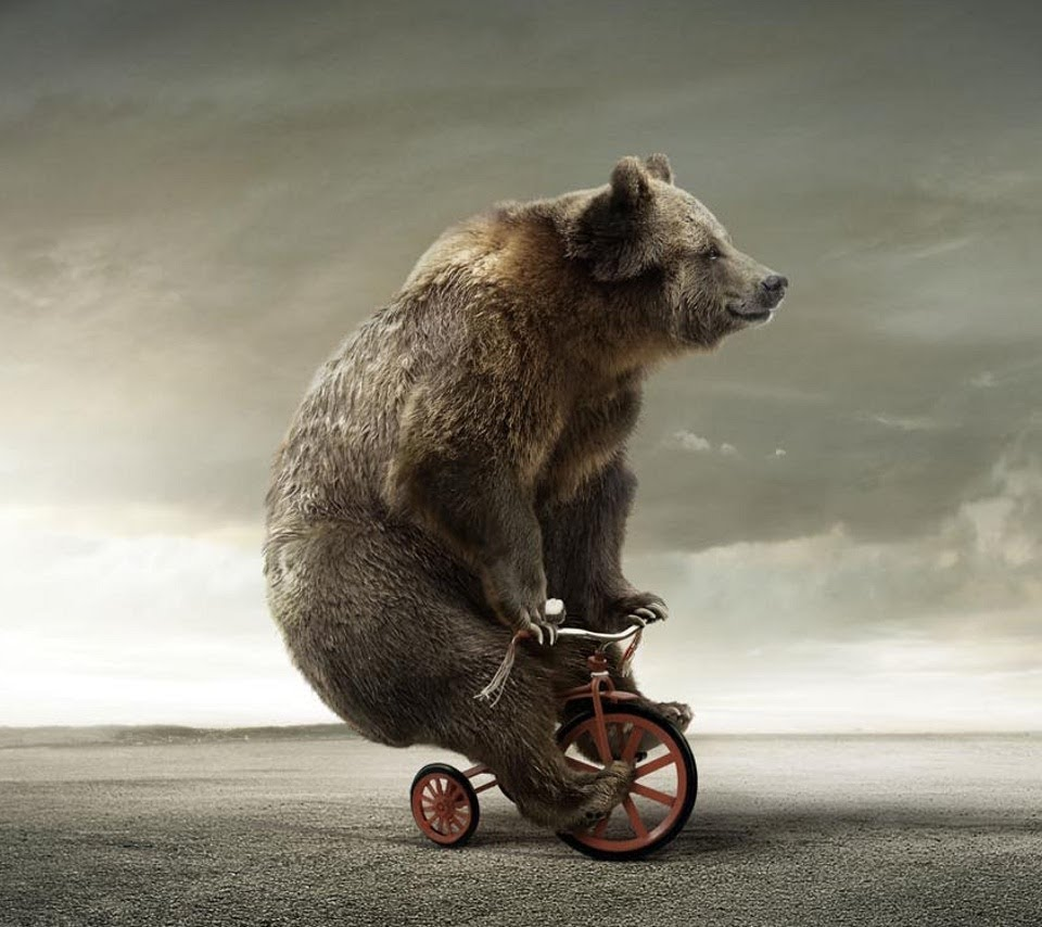[Image: Funny-Bear-Riding-Bicycle.jpg]