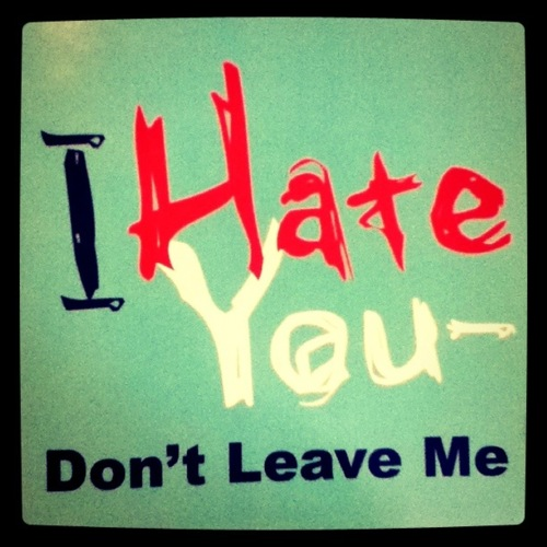 25 Very Best I Hate You Pictures