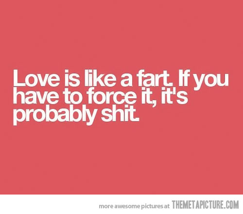 Silly Love Quotes Cool 48 Very Funny Love Pictures