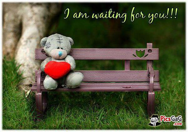 I Am Waiting For You Alone Teddy Bear Picture