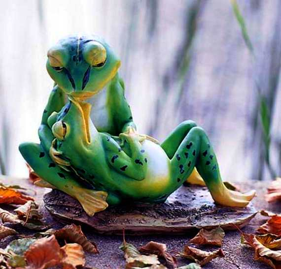 Kissing Frog Couple Funny Love