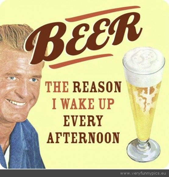 the reasons we drink beer 2 essay 8 reasons why the drinking age should be lowered  we know that it can damage our bodies and have serious side effects, but this is why our fascination with alcohol .