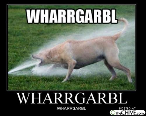 [Image: Wharrgarbl-Funny-Random-Poster.jpg]