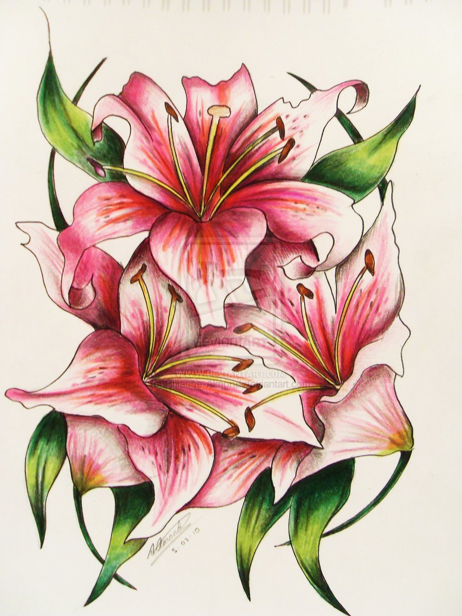 Amazing Three Red Lily Flowers Tattoo Design By Rhianne Almond