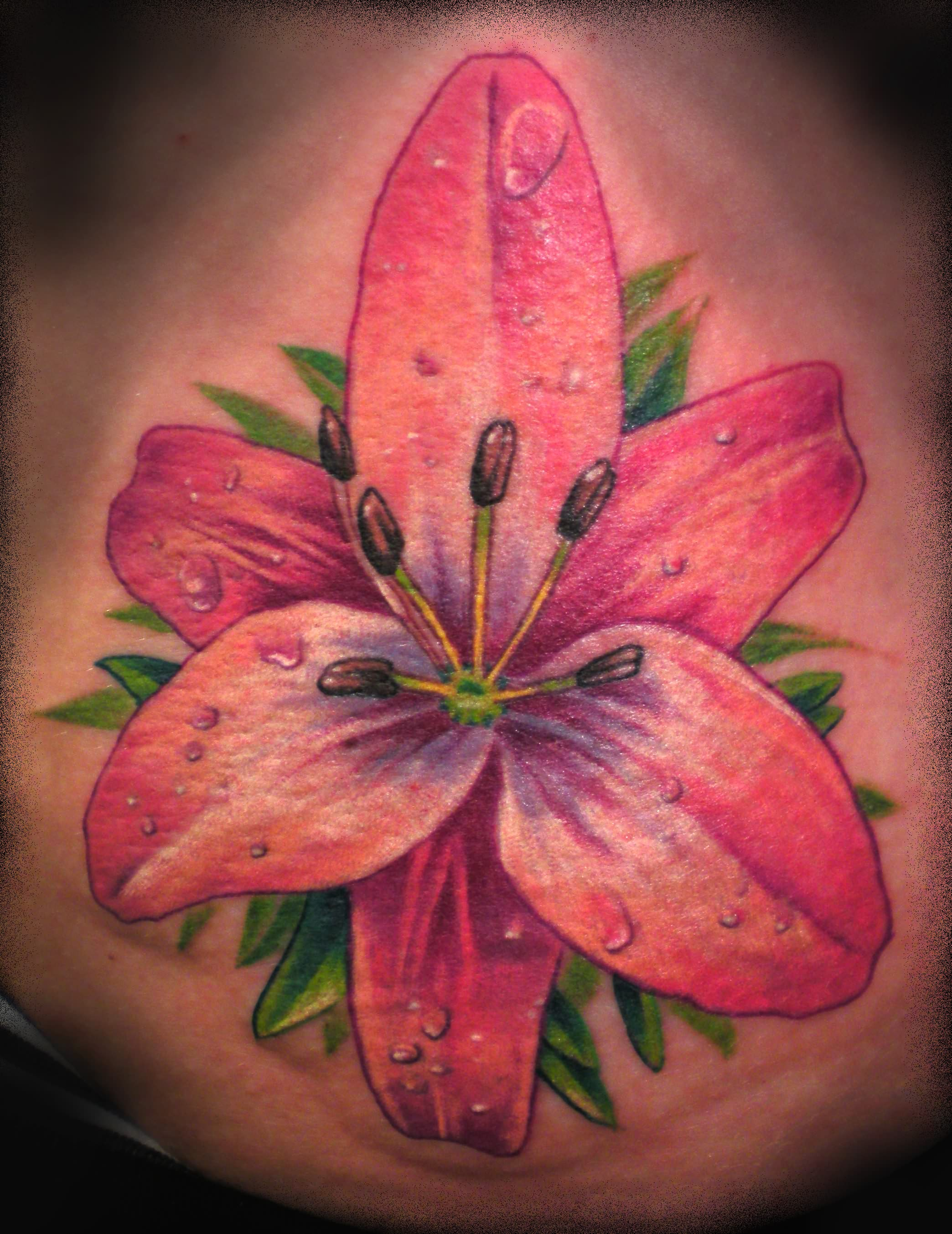 15 lily tattoo images pictures and ideas awesome pink lily flower tattoo design izmirmasajfo