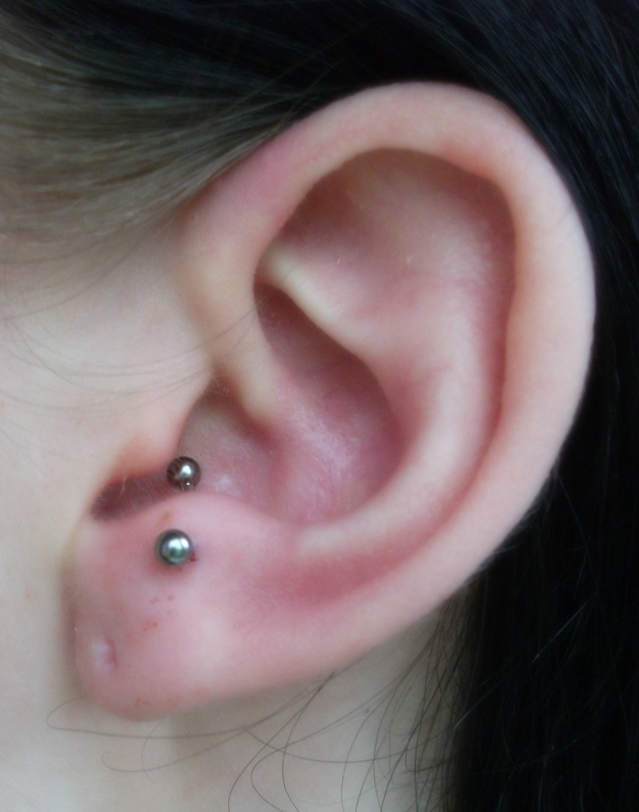 8 Beautiful Tragus Piercing And Ideas
