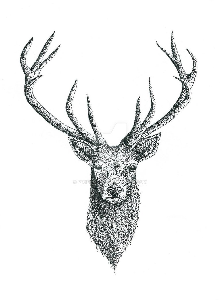 grey ink deer head tattoo design by anet rh askideas com browning deer head tattoo designs deer head tattoo designs
