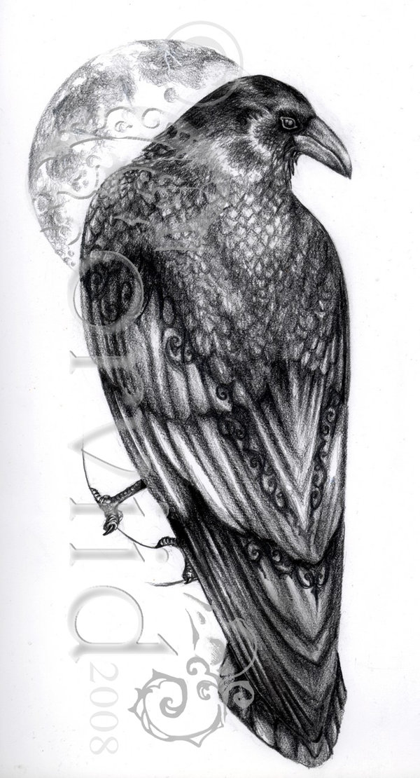 Grey Ink Raven Tattoo Design By Corviid