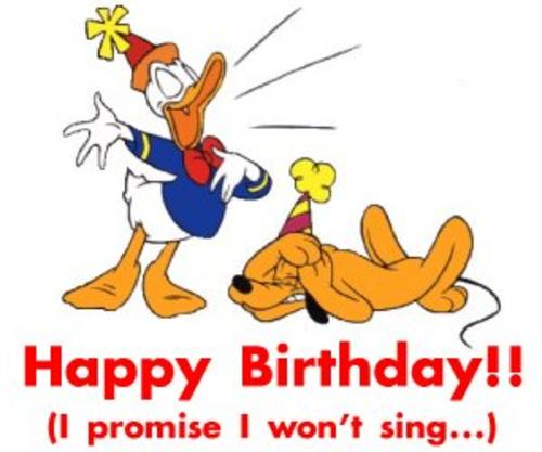 Happy Birthday Funny Duck Cartoon Picture