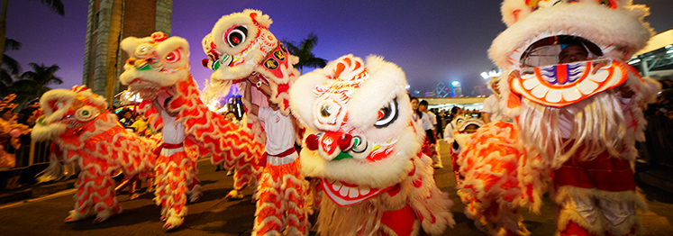 hong kong chinese new year celebrations - The Chinese New Year