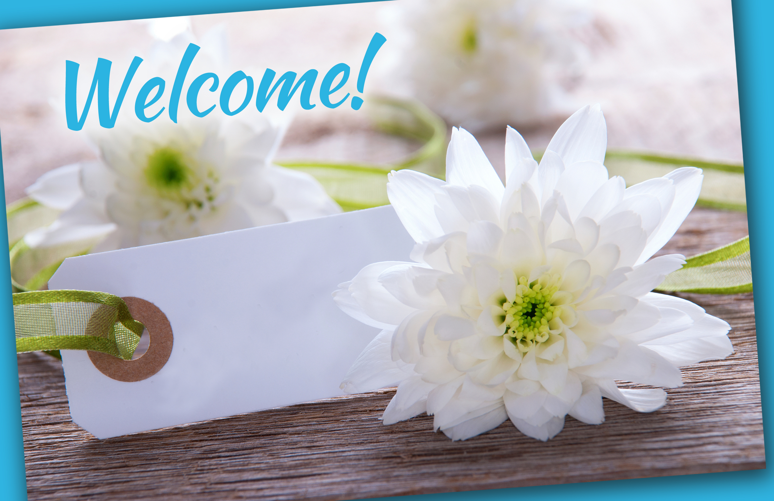 Welcome Flowers Picture