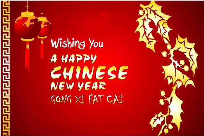 wishing you a happy chinese new year - Happy Chinese New Year In Chinese