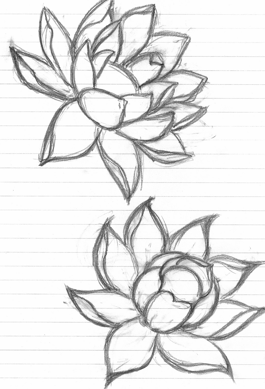 Black Ink Lotus Flower With Cat Tattoo Design