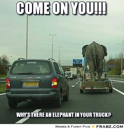 come on you why there an elephant in your truck funny meme