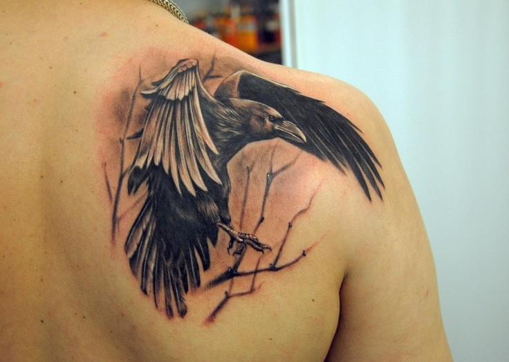 Crow Sit On Tree Without Leaves Tattoo On Right Back Shoulder