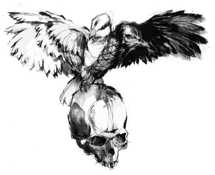 Dove And Crow On Skull Tattoo Design By Slicedpapertigers