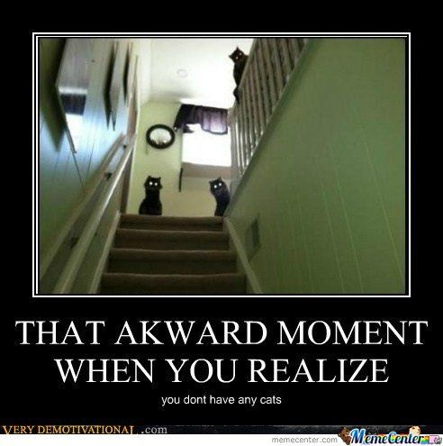 Funny Scary Cats Poster 31 very funny scary pictures and images