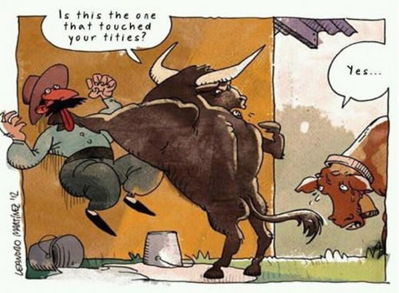 Is This The One That Thouched Your Tities Funny Bull Cartoon 16 funny bull pictures and photos