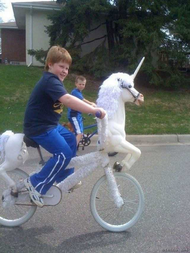 31 Most Funny Bicycle Images