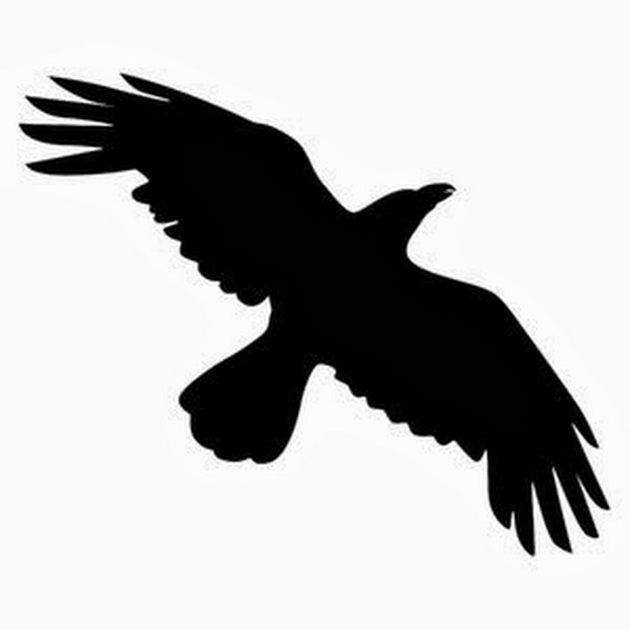 14 crow tattoo designs  samples and ideas red winged blackbird clipart Blackbird Outline