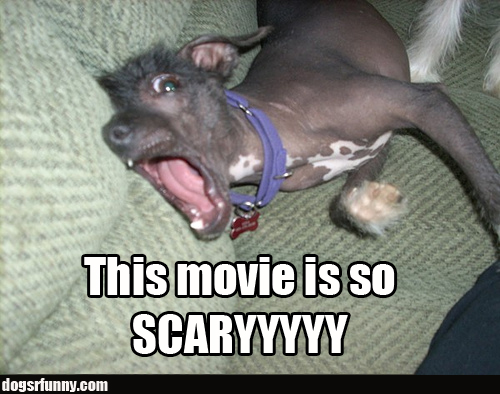 20 very funny scary images