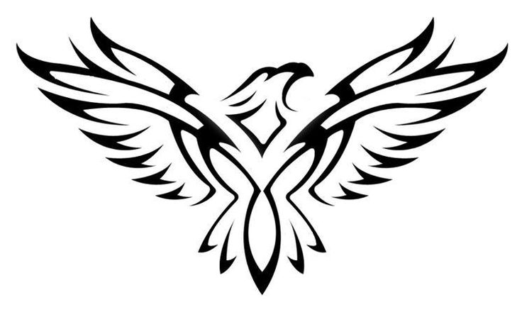 Gallery For gt Tribal Hawk