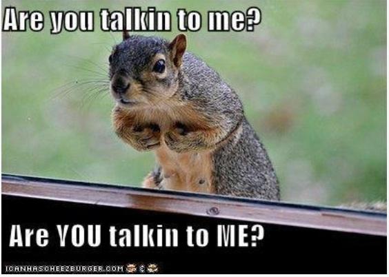 Squirrel kiss meme - photo#28