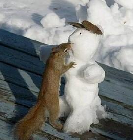 Bildergebnis für very funny snowman