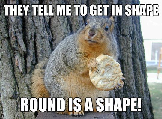 Squirrel kiss meme - photo#55