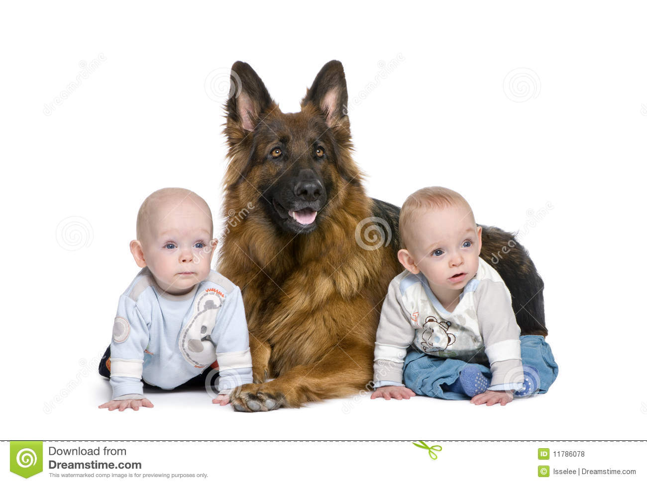 Twin Boy Kids With German Shepherd Dog Picture