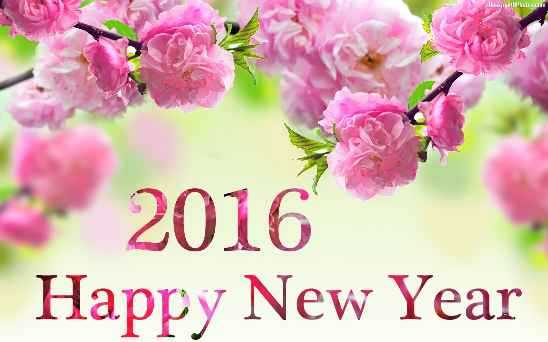 2016 happy new year flowers background