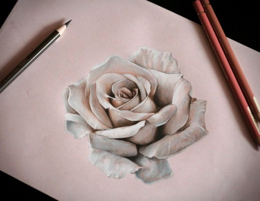 Gallery For gt Realistic White Rose Tattoos
